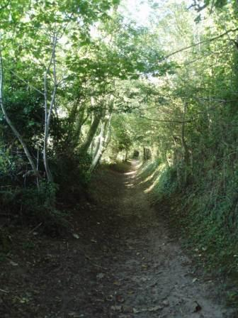 A path to Roman Camp