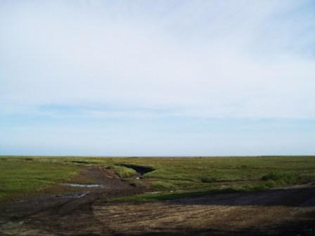 The Stiffkey Marshes